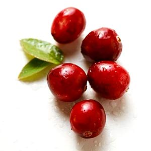 https://www.pacifichealth.info/images/cranberries.jpg